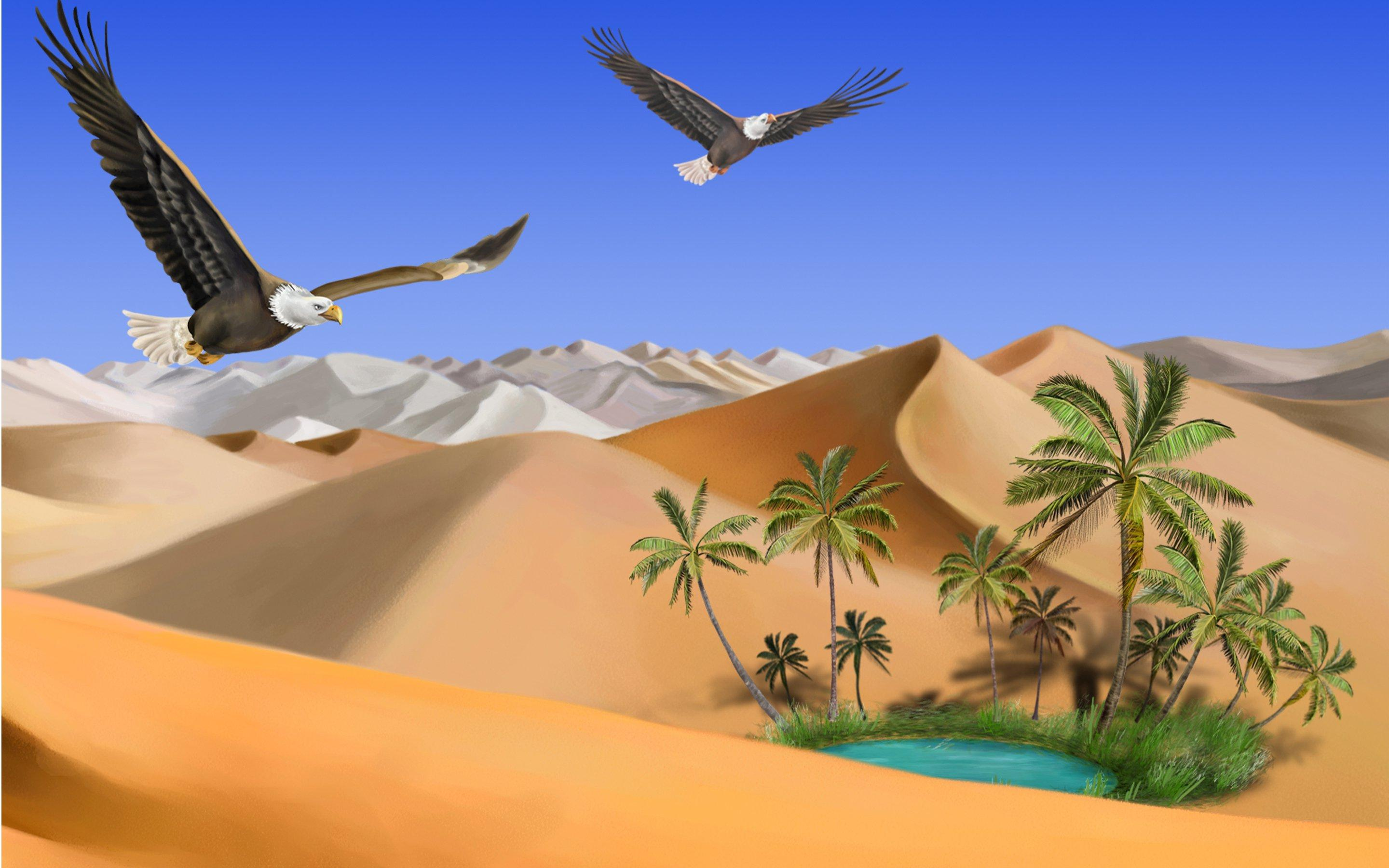 oasis landscape wallpapers archives - photo #5